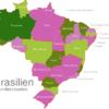 Map Brazil States Amazonas