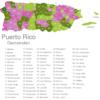Map Puerto Rico Municipalities Aguada