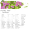 Map Puerto Rico Municipalities Aguadilla