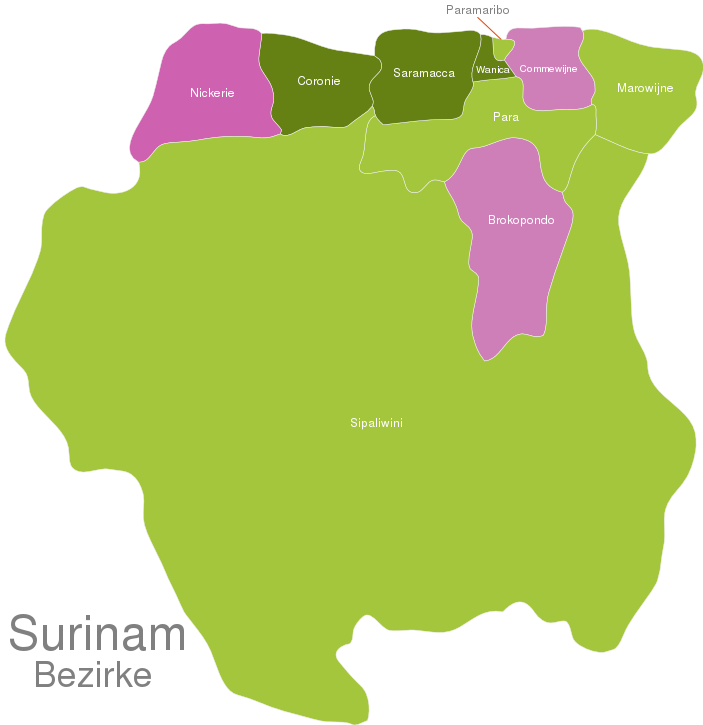 Suriname Districts